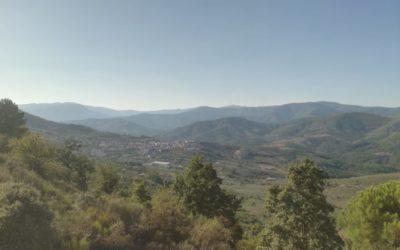 Las políticas municipales de envejecimiento ante la COVID 19 en Extremadura